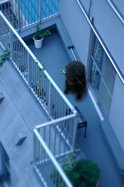 balcony_otta.jpg