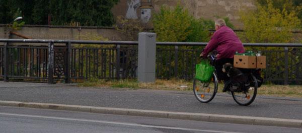 berlindogcycling.jpg