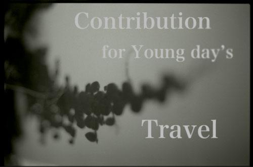 contribution.jpg